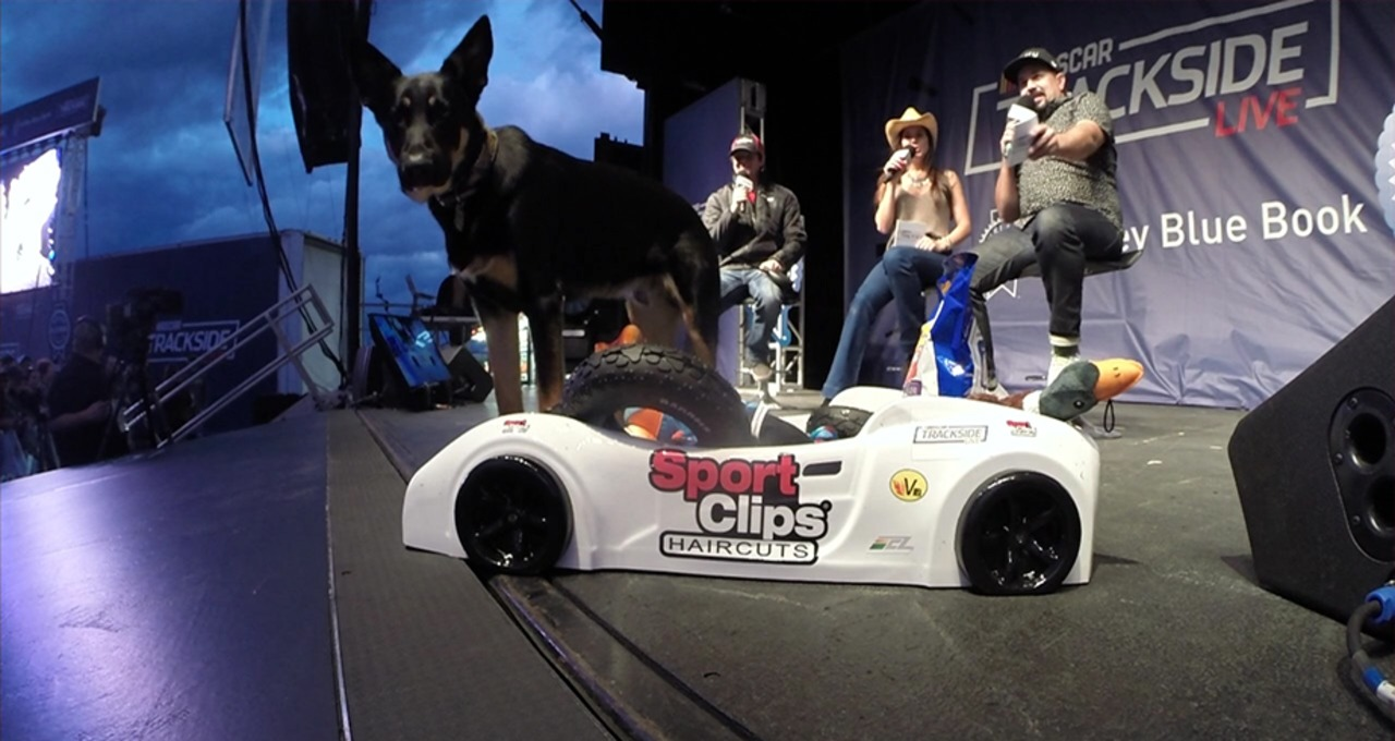 Erik Jones, Oscar the dog visit Trackside Live